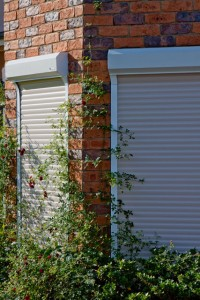 plants growing around and on two white security roller shutters