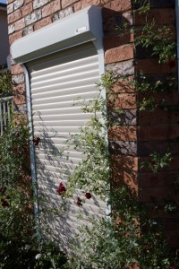 plants growing around the edges of white Shutter World security roller shutters